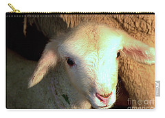 Baby Lamb Carry-all Pouch