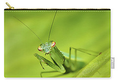 Carry-all Pouch featuring the photograph Baby Praymantes 6661 by Kevin Chippindall