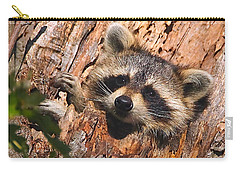 Baby Raccoon Carry-all Pouch by William Jobes