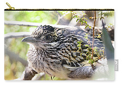 Baby Roadrunner  Carry-all Pouch by Saija Lehtonen