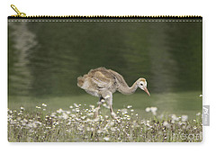 Baby Sandhill Crane Walking Through Wildflowers Carry-all Pouch