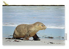Baby Sea Lion On Seals Bay Carry-all Pouch