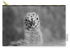 Carry-all Pouch featuring the photograph  Baby Seagull Spots    by John F Tsumas