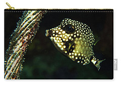 Carry-all Pouch featuring the photograph Baby Trunk Fish by Jean Noren