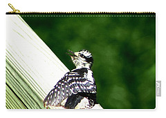 Carry-all Pouch featuring the photograph Baby Woody by Barbara S Nickerson