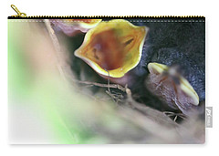 Carry-all Pouch featuring the photograph Baby Wrens In The Flowers 338 by Ericamaxine Price