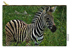 Baby Zebra  Carry-all Pouch