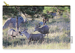 Carry-all Pouch featuring the photograph Bachelor Pad by Shane Bechler