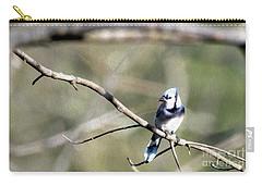 Backyard Blue Jay Oil Carry-all Pouch