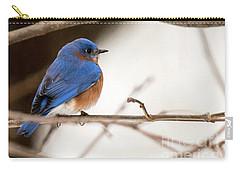 Backyard Bluebird Carry-all Pouch