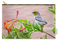 Carry-all Pouch featuring the photograph Backyard Verdin by Dan McManus