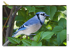 Backyard Visitor Carry-all Pouch