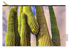 Carry-all Pouch featuring the photograph Bad Hombre by Paul Wear