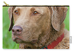 Carry-all Pouch featuring the photograph Bailee 1149 by Guy Whiteley