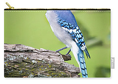Bald Blue Jay- It Must Be August Carry-all Pouch by Ricky L Jones