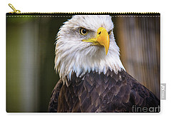 Carry-all Pouch featuring the photograph Bald Eagle by Lisa L Silva