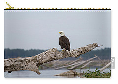 Bald Eagle #1 Carry-all Pouch