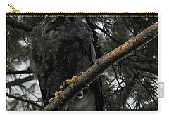 Carry-all Pouch featuring the photograph Bald Eagle by Glenn Gordon