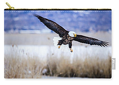 Carry-all Pouch featuring the photograph Bald Eagle Landing by Bryan Carter