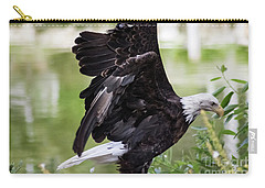 Bald Eagle Lifting Off Carry-all Pouch