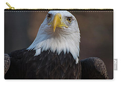 Bald Eagle Looking Right Carry-all Pouch