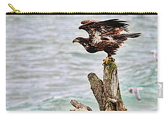 Bald Eagle On Driftwood At The Beach Carry-all Pouch by Peggy Collins