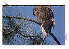 Carry-all Pouch featuring the photograph Bald Eagle by Sally Weigand