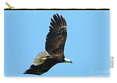 Carry-all Pouch featuring the photograph Bald Eagle Series IIi by Deborah Benoit