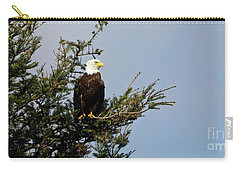 Bald Eagle - Taking A Break Carry-all Pouch