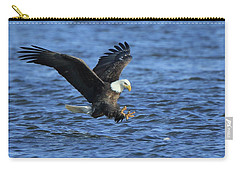 Carry-all Pouch featuring the photograph Bald Eagle Talons Up by Coby Cooper