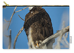 Bald Eagle With Pogo Nip Carry-all Pouch
