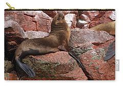 Ballestas Island Fur Seals Carry-all Pouch by Aidan Moran