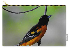 Baltimore Oriole Carry-all Pouch by Betty-Anne McDonald