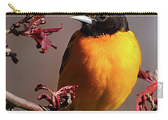 Baltimore Oriole II Carry-all Pouch
