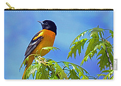 Carry-all Pouch featuring the photograph Baltimore Oriole In An Oak Tree by Rodney Campbell