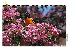 Baltimore Oriole Carry-all Pouch by Susan Dimitrakopoulos