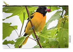 Carry-all Pouch featuring the photograph Baltimore Oriole With Raspberry  by Ricky L Jones