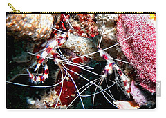 Carry-all Pouch featuring the photograph Banded Coral Shrimp - Caught In The Act by Amy McDaniel