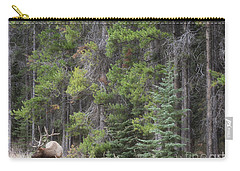 Banff Canada Elk Woodland Landscape Carry-all Pouch by Andrea Hazel Ihlefeld
