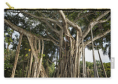 Carry-all Pouch featuring the photograph Banyan Tree At Bonnet House by Belinda Greb