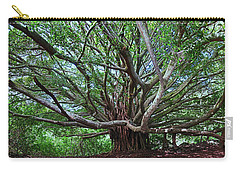 Banyan Tree Carry-all Pouch by James Roemmling