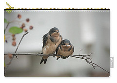 Barn Swallow Fledglings Carry-all Pouch