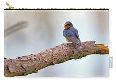 Barn Swallow On Assateague Island Carry-all Pouch by Rick Berk