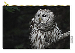 Carry-all Pouch featuring the photograph Barred Owl 2 by Glenn Gordon