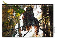 Barred Owl At Sunrise Carry-all Pouch by Brent L Ander