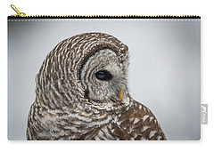Carry-all Pouch featuring the photograph Barred Owl Portrait by Paul Freidlund