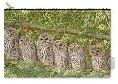 Barred Owlets Nursery Carry-all Pouch