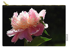 Carry-all Pouch featuring the photograph Basking In The Sun by Betty-Anne McDonald
