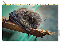 Carry-all Pouch featuring the photograph Bat Rehoused by Jean Noren