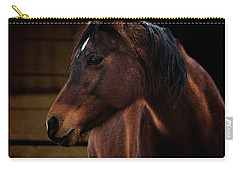 Bay Arabian Mare 2 Carry-all Pouch by Karen Slagle